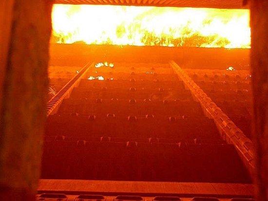 Brescia biomass firing